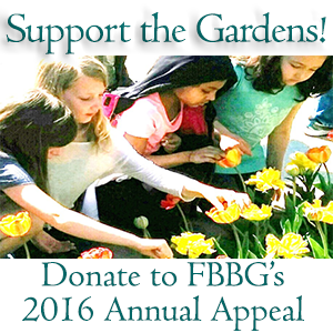 Support the Gardens through FBBG's 2016 Annual Appeal