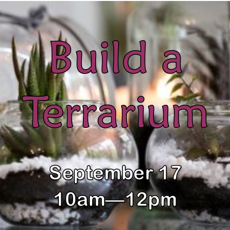 Create a gorgeous miniature landscape inside a jar! Terrariums add a uniqueness to any home, require minimal maintenance, and always look great. Excellent class for kids! All supplies provided.