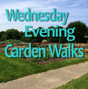 Wednesday Night Garden Walks