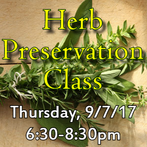 Herb Preservation web icon a