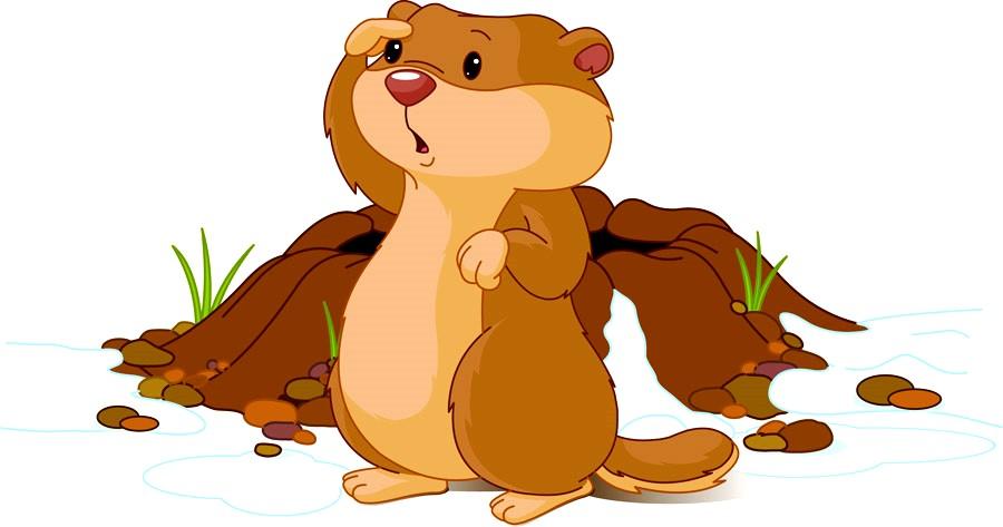 mr-groundhog