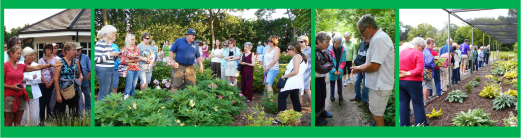 Friends Of Boerner Botanical Gardensupcoming Events Wednesday Night Garden Walk