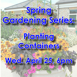 Spring Gardening Series: Containers