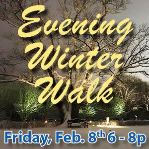 Evening Winter Walk web icon
