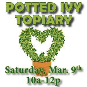 Ivy topiary 19 web icon