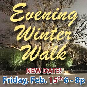 Evening Winter Walk NEW DATE web icon