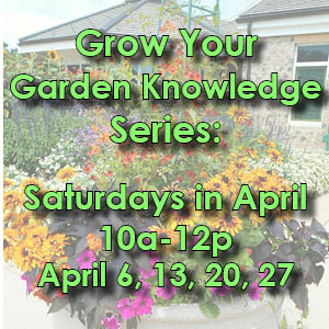 spring grow your garden series web icon updated color