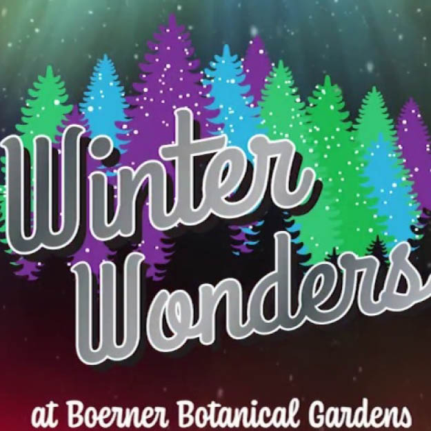 Winter Wonders Web Icon For Front Web Page