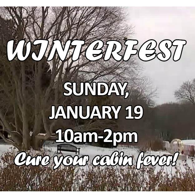 Winterfest Web icon