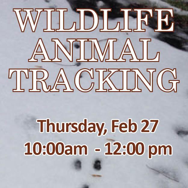 Wildlife Animal Tracking Web Icon